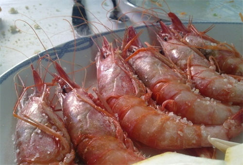 The Gamba Roja from this part of Spain are considered the finest in the whole country. They come ashore in El Campello, Villajoyosa and Santa Pola
