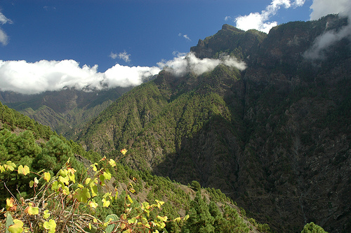 a Palma Canary Islands - La Caldera de Taburiente National Park: La Palma car hire