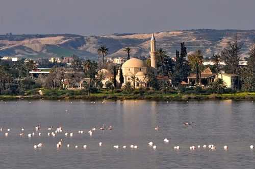 Larnaca, Cyprus - flamingoes and Hala Sultan Tekke - Larnaca Airport car hire